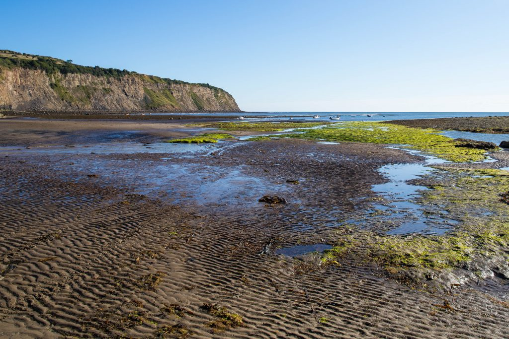 Coastline at Robin Hoods Bay